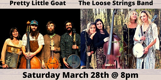 Pretty Little Goat/The Loose Strings Band