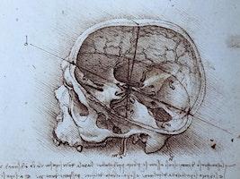Balancing the Brain