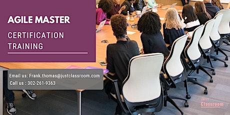 Agile & Scrum Certification Training in Corner Brook, NL tickets
