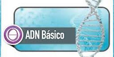 ThetaHealing: ADN Basico  tickets