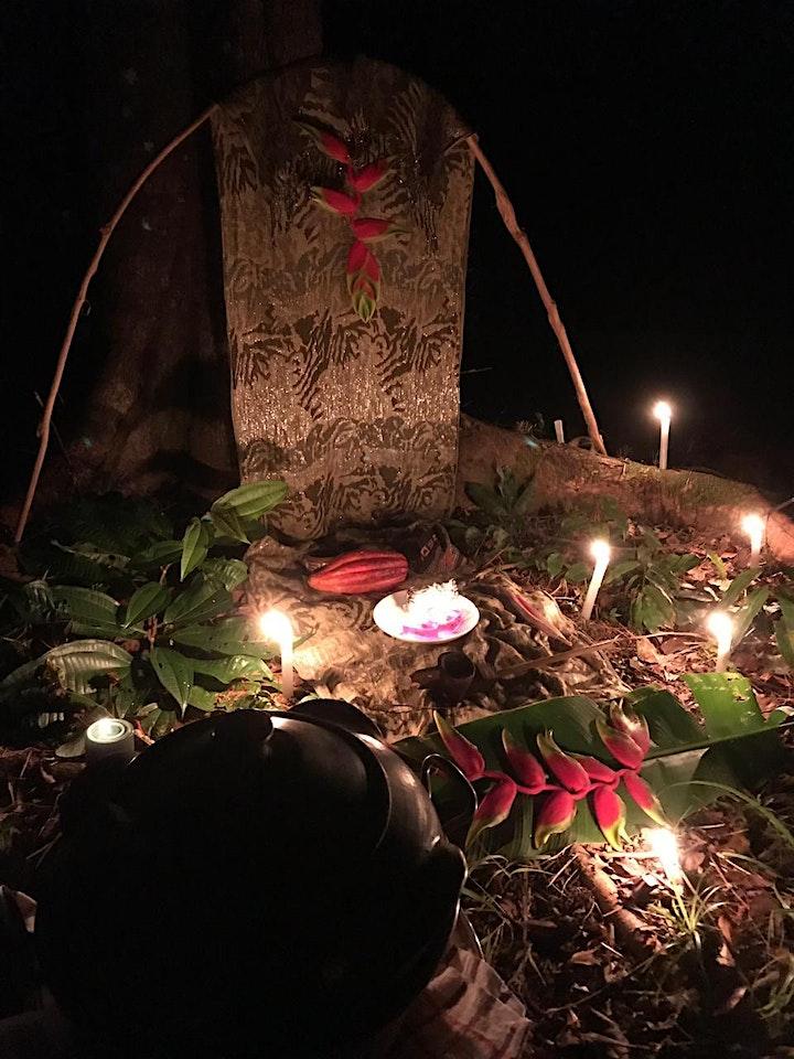 Imagem do evento II INICIAÇÃO NA MEDICINA DO CACAU SAGRADO