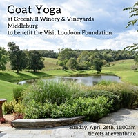 Baby Goat Yoga at Greenhill Winery to Benefit the Visit Loudoun Foundation