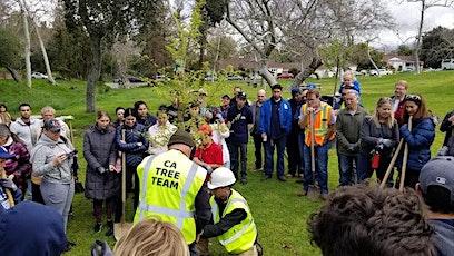 City of Hawaiian Gardens Tree Workshop tickets