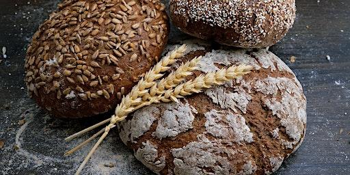 Iniciação à fermentação natural, com Ágata Britto