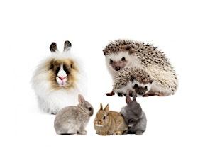 Hands On Exotics: Furry Friends tickets