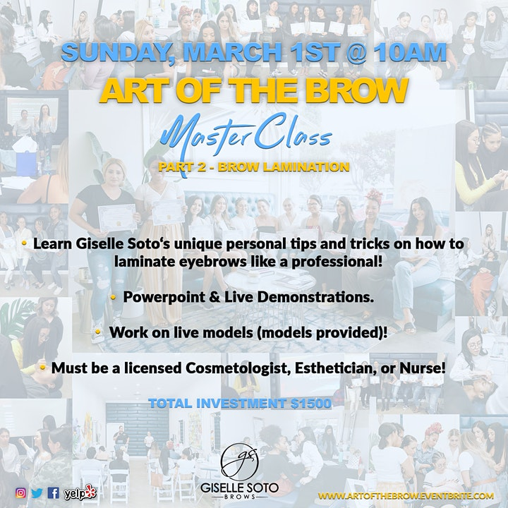 Giselle Soto BROW LAMINATION Masterclass image