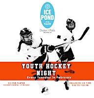 Youth Hockey  Night