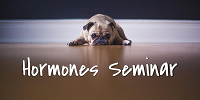 Hormones and Fatigue: Free Seminar