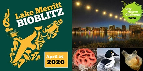 Lake Merritt BioBlitz 2020 - City Nature Challenge  tickets
