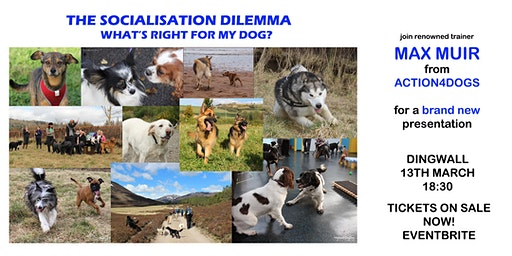 The Socialisation Dilemma - what's right for my dog? with MAX MUIR