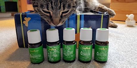 Ätherische Öle für Haustiere - Einführung in die sichere Anwendung Tickets