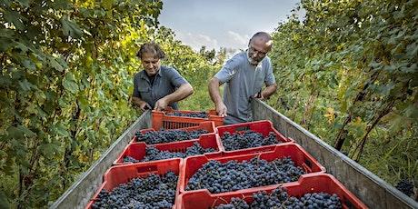 Boglietti Wine Dinner 2020 tickets