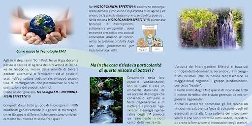 Benessere - Come aiutare te stesso  e l'ambiente in modo concreto