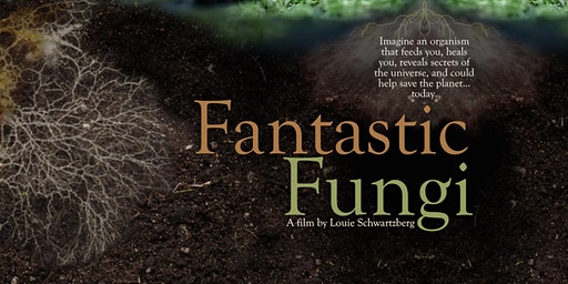 Fantastic Fungi (Shown 6 times daily)