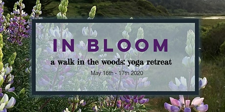 In Bloom: hiking & yoga overnight in the woods tickets