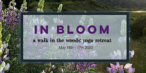 In Bloom: hiking & yoga overnight in the woods