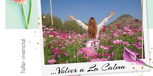 """""""VOLVER A LA CALMA"""", Taller Vivencial"""