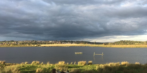 FREE - Heritage conservation: Broomhill Flash Nature Reserve