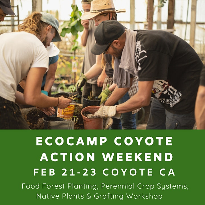 EcoCamp Coyote Winter Action Weekend image