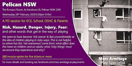 Risky Dodgy Dangerous Play - in Pelican NSW