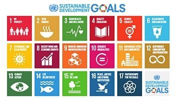 UNA-UN Advocacy · Environment