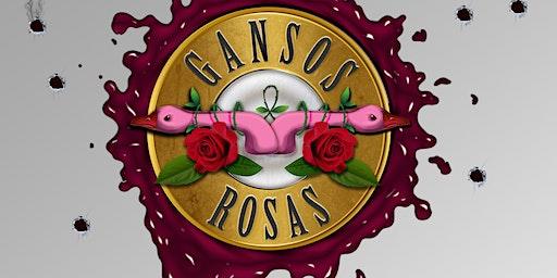 El mejor homenaje a  GUNS N´   ROSES  en  Alicante - Gansos Rosas