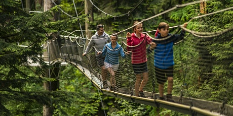 Discover the Forest Canopy: Family Friendly Tree Top Adventure tickets