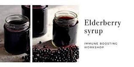 Elderberry Syrup & Winter Wellness Workshop tickets