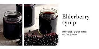 Elderberry Syrup & Winter Wellness Workshop