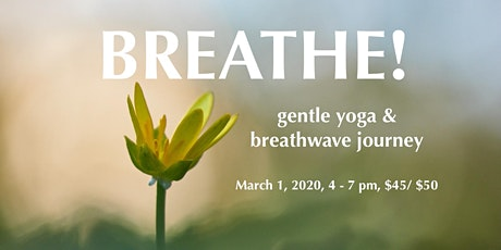 Breathe! - a gentle yoga and breathwave journey tickets