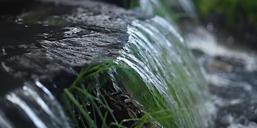Agua estructurada. Agua de vida