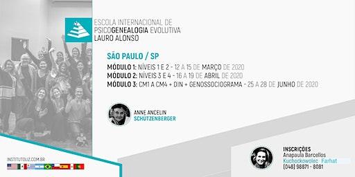 TURMA III - SÃO PAULO - FORMAÇÃO INTERNACIONAL PSICOGENEALOGIA EVOLUTIVA