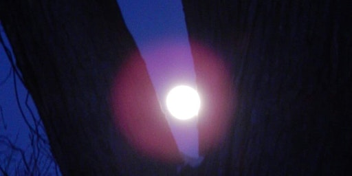 March Moon Psychic Fair