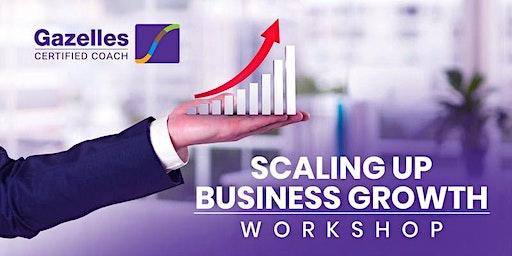 Scaling Up Workshop - Mastering the Rockefeller Habits 2.0