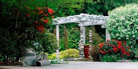 PAWA invited to Bellevue Botanical Gardens, Mother's Day, 2020