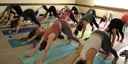 Dairy Barn Yoga