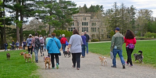 4th Annual Kyle's Legacy Walk to Benefit Canine Cancer Research