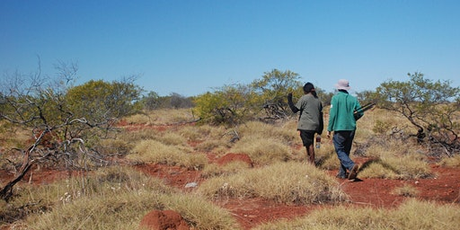 Synapse Seminar: Searching for a sixth sense with Gurindji people