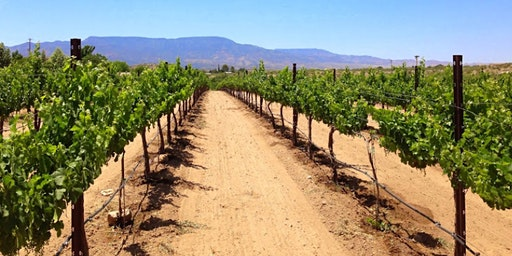 Verde Valley Wine Tour