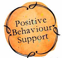 Positive Behaviour Support Series - Workshop 3: Positive Behaviour Support Interventions