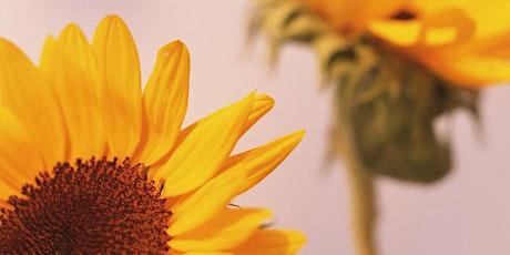 Kopie von Vortragsreihe Ayurvedische Jahreszeiten: Grisna - Früher Sommer Tickets