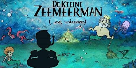 Krokus Kabaal: De Kleine Zeemeerman tickets