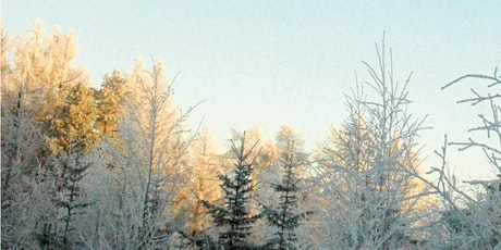 Hemanta - Früher Winter | Ayurvedische Jahreszeiten Vortragsreihe Tickets