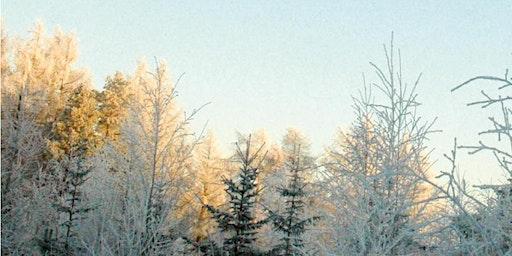 Hemanta - Früher Winter | Ayurvedische Jahreszeiten Vortragsreihe