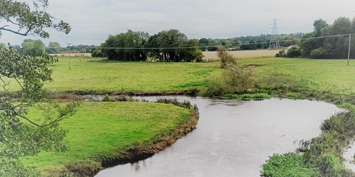 The Wensum's waterways and wetlands with Carl Chapman