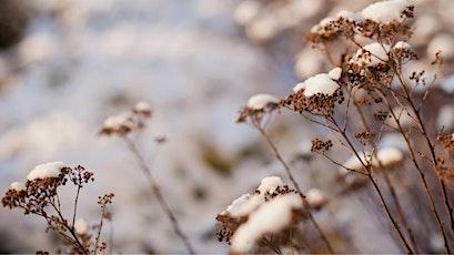 Sisira - Später Winter | Ayurvedische Jahreszeiten Vortragsreihe Tickets