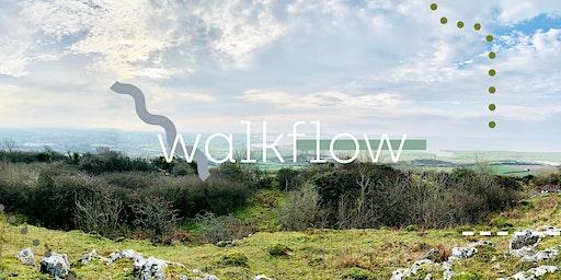 Walk ~ Flow : Tuesday 25th February. Warton Cragg.