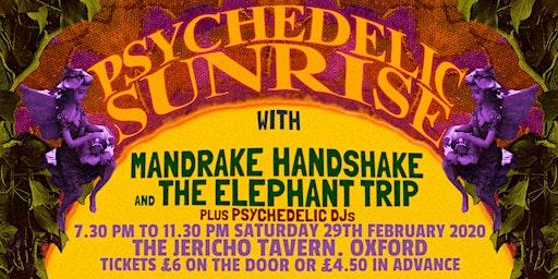 The Elephant Trip & Mandrake Handshake