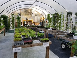 Tower Garden 101 Workshop