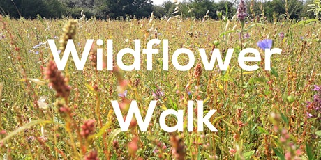 Wildflower Walk tickets